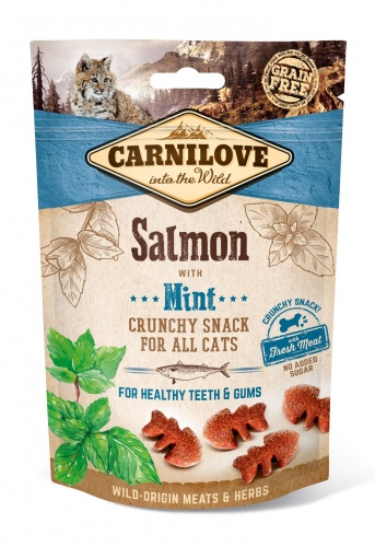 Cat Salmon & Mint Crunchy Snack